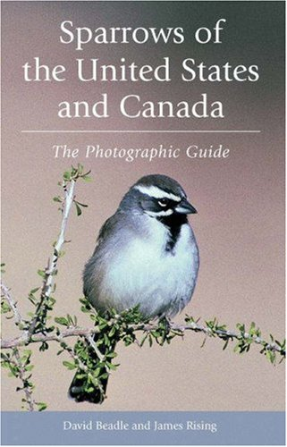 Sparrows of the United States and Canada: The Photographic Guide