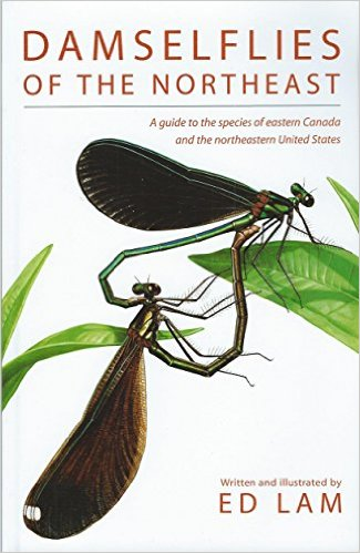 Damselflies of the Northeast : A Guide to the Species of Eastern Canada & the Northeastern United States