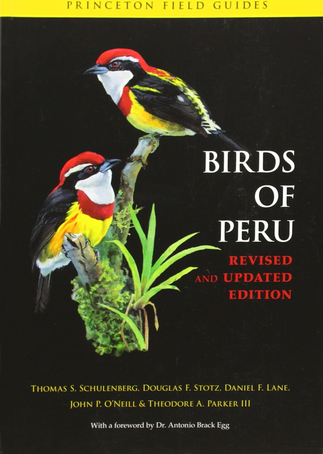 Birds of Peru (Princeton Field Guides)