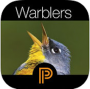 Warbler Guide App (iOS & Android)