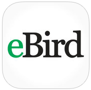 eBird Mobile icon