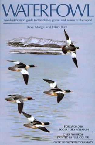 Waterfowl: An Identification Guide to the Ducks, Geese, and Swans of the World